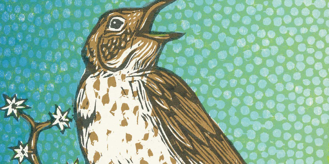 Woodthrush Header